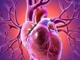 Complicatii cardiovasculare ale leziunii maduvei spinarii